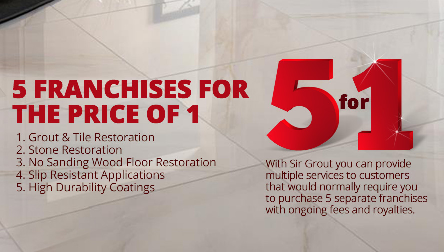 Sir Grout's 5 Franchises for the Price of 1 Value