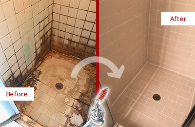 Before and after picture of restoration of a tile shower plagued with mold and soap scum